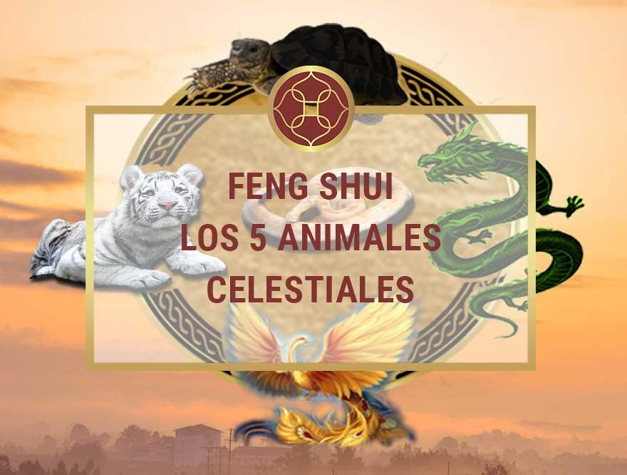 los 5 animales celestiales del feng shui