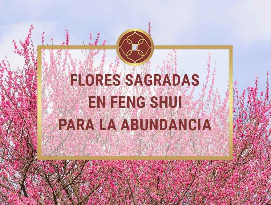 Flores Sagradas en Feng Shui